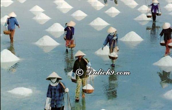 Các danh lam, thắng cảnh du lịch bụi Sa Huỳnh - Kinh nghiệm du lịch biển Sa Huỳnh