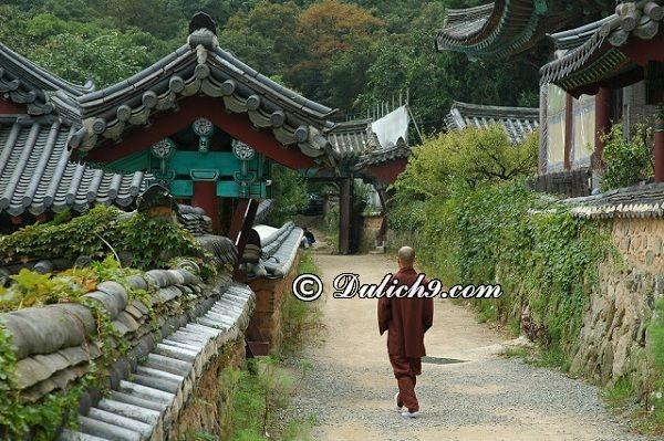 Địa điểm tham quan ở Busan/ Chơi gì ở Busan?