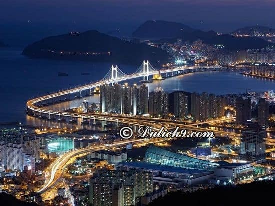 Kinh nghiệm du lịch Busan