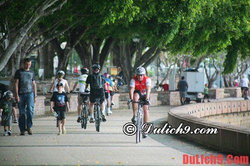 Kinh nghiệm du lịch Brisbane đầy đủ và chi tiết