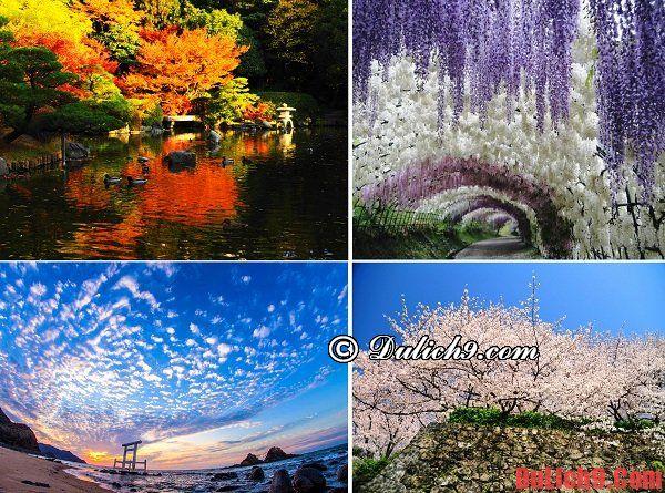 Nên du lịch Fukuoka, Nhật bản vào thời gian, thời điểm và mùa nào trong năm là tuyệt nhất?
