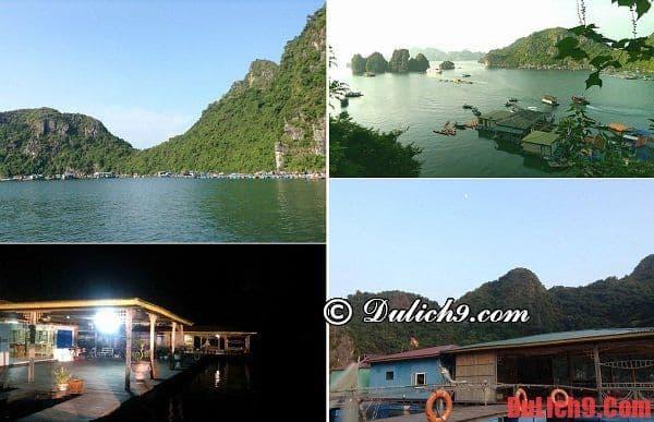 Du lịch, khám phá và tham quan làng chài Cửu Vạn
