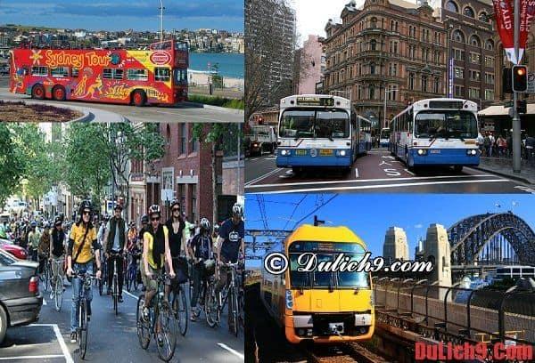 Các phương tiện di chuyển nên sử dụng khi du lịch Sydney và cách sử dụng