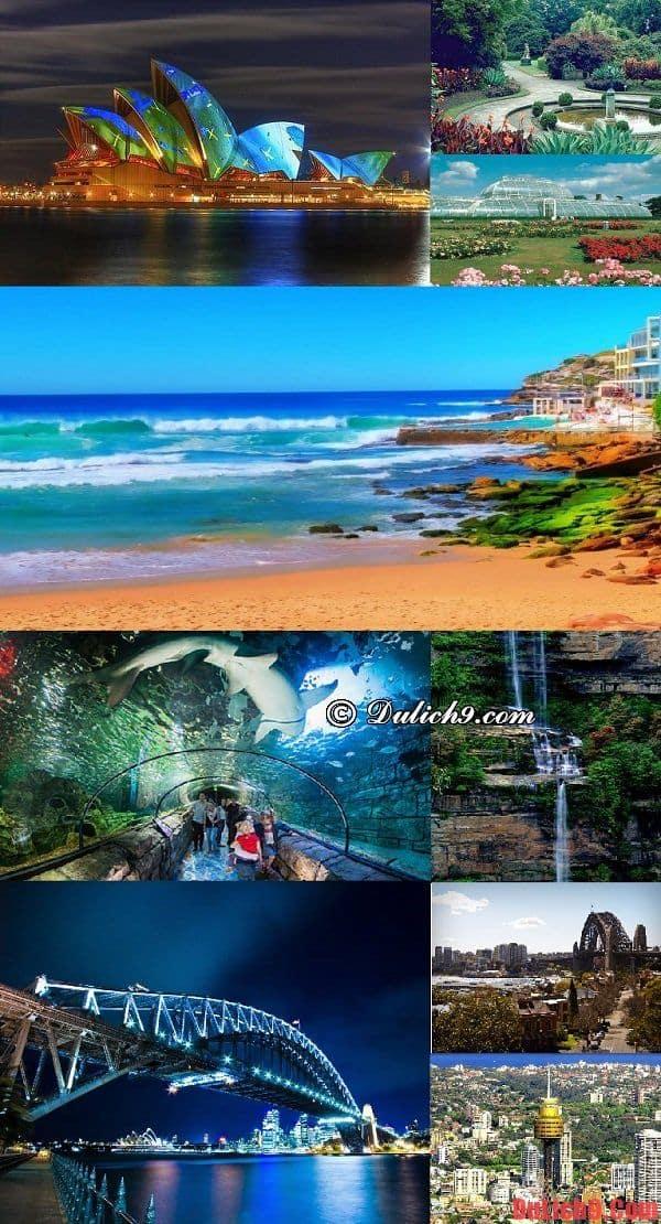 Những điểm đến hấp dẫn và nổi bất không thể không tham quan khám phá khi du lịch Sydney, Úc