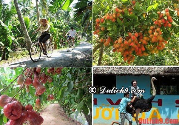 Địa điểm tham quan ở Vĩnh Long