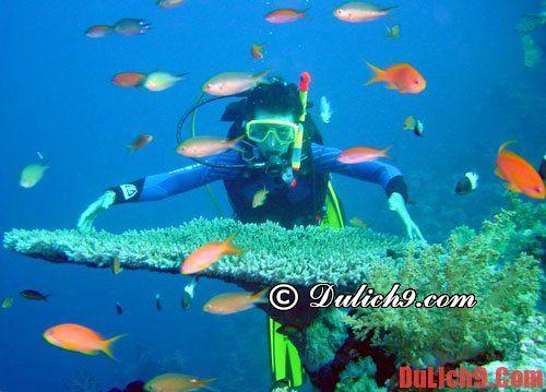 Kinh nghiệm lặn biển ở Nha Trang