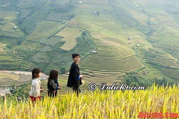 Mù Cang Chải - Lai Châu - Sapa