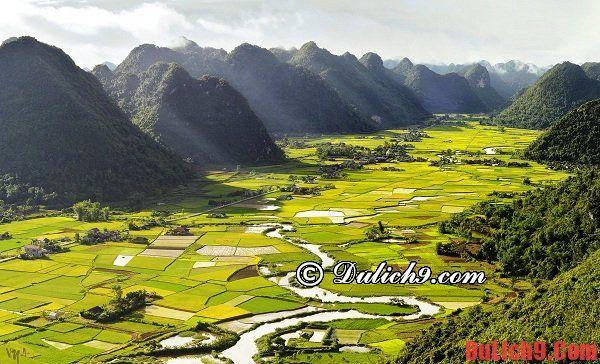 Địa điểm ngắm ruộng bậc thang mùa lúa chín đẹp và hấp dẫn nhất ở miền Bắc