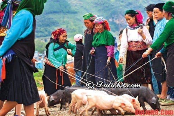 Hoạt động thường ngày của chợ phiên vùng cao Hà Giang