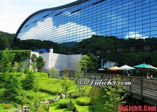 Bảo tàng quốc gia Kyushu - Điểm tham quan, du lịch không thể không đi ở Fukuoka, Nhật Bản