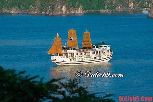 Kinh nghiệm thuê tàu và thuyền tham quan vịnh Hạ Long