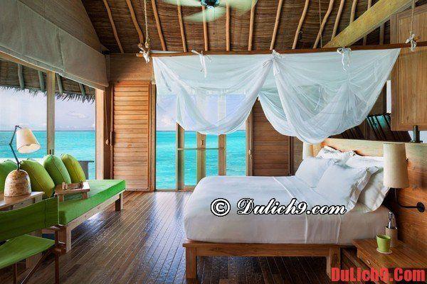Vì sao nên du lịch Maldives?