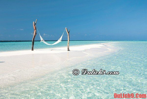 Kinh nghiệm du lịch Maldives ngon, bổ, rẻ