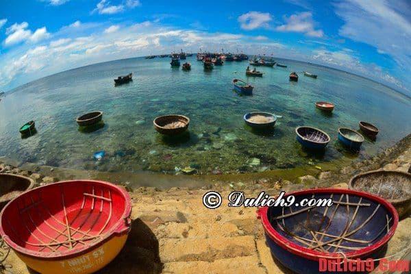 Hướng dẫn du lịch đảo Lý Sơn 4 ngày giá rẻ