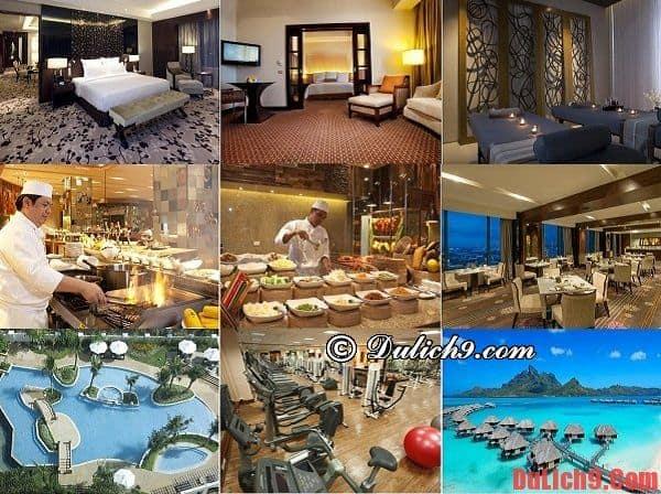 Những khách sạn cao cấp, chất lượng và đẹp nên ở khi du lịch Cebu, Philippines