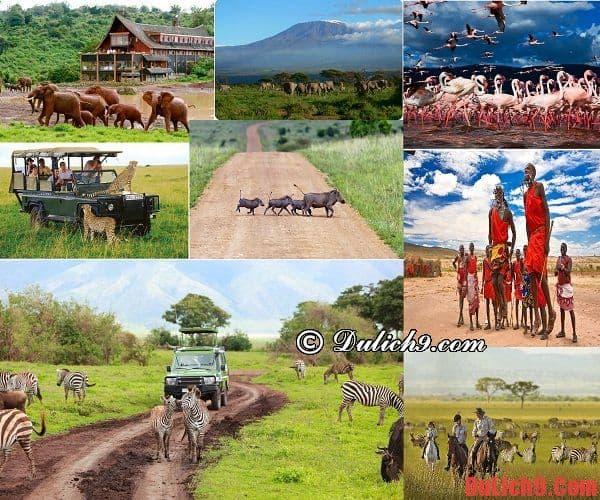 Những điểm tham quan du lịch nổi tiếng Kenya nhất định phải đến một lần