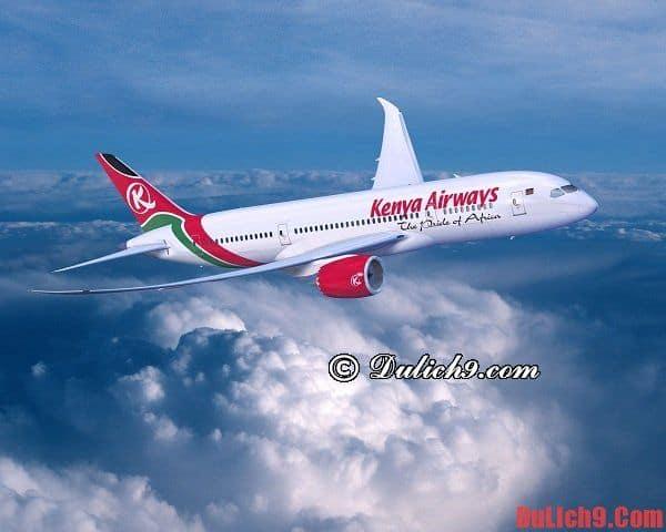 Tư vấn lộ trình Việt Nam - Kenya thuận lợi, nhanh trong và tiết kiệm nhất