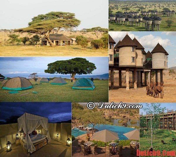 Kinh nghiệm đặt phòng khách sạn khi du lịch Kenya