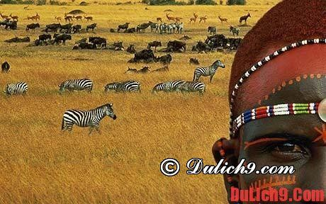 Kinh nghiệm du lịch Kenya tự túc, giá rẻ và thuận lợi