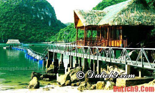 Hướng dẫn du lịch vịnh Lan Hạ