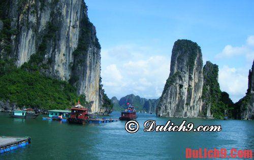 Tư vấn du lịch vịnh Lan Hạ, Cát Bà