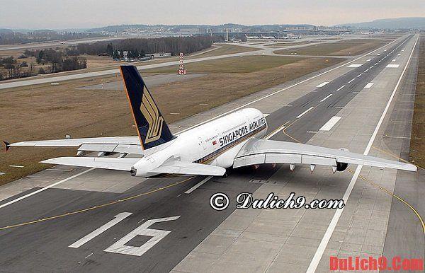 Những hãng hàng không khai thác chặng bay Việt Nam - Sao Paulo