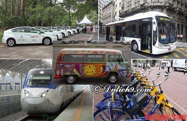 Những phương tiện di chuyển ở Sao Paulo