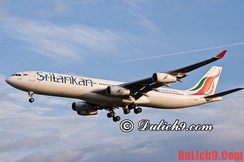Tư vấn du lịch Sri Lanka chi tiết