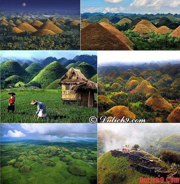 Đảo Bohol - Điểm tham quan, du lịch độc đáo phải ghé qua một lần khi du lịch Philippines