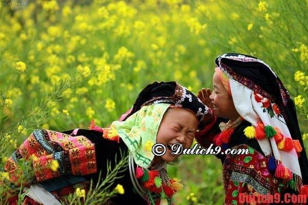 """Thời điểm thích hợp và tuyệt vời nhất để du lịch Mộc Châu """"săn hoa"""""""