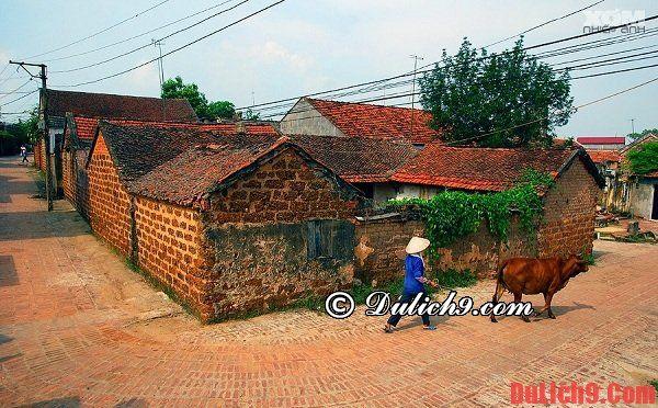 Du lịch làng cổ Đường Lâm