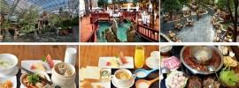 Khách sạn 5 sao đẳng cấp, sang trọng, tiện nghi hiện đại được đánh giá cao nhất ở Cửu Trại Câu
