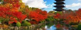 Những khách sạn bình dân, giá rẻ, đẹp, tốt ở Kyoto nên ở