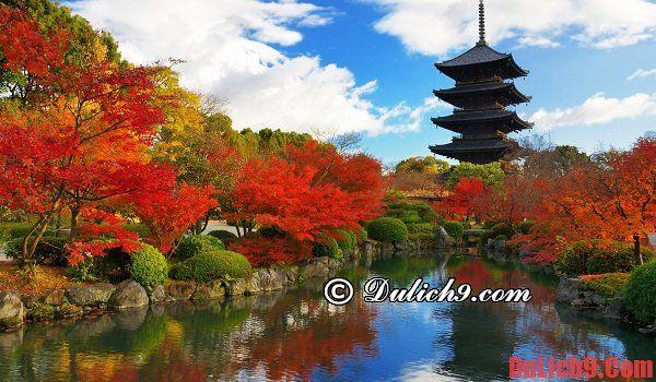 Khách sạn bình dân, giá rẻ ở Kyoto