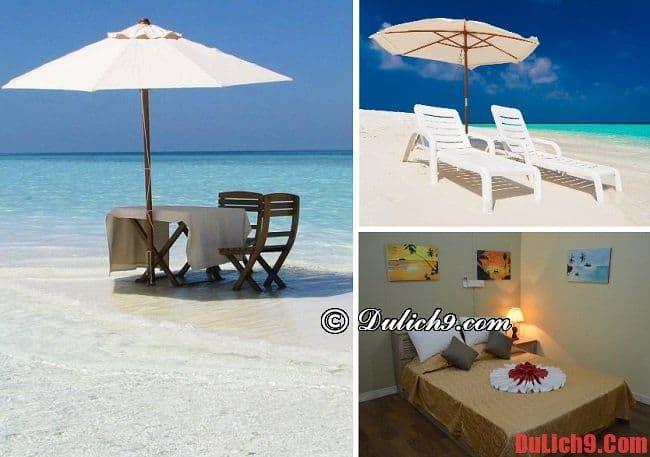 Nên thuê khách sạn nào giá rẻ ở Maldives?
