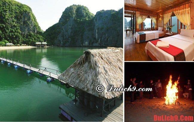 Resort có tầm nhìn đẹp ở đảo Cát Bà. Du lịch đảo Cát Bà nên ở khách sạn nào? Khách sạn đẹp, giá rẻ ở đảo Cát Bà