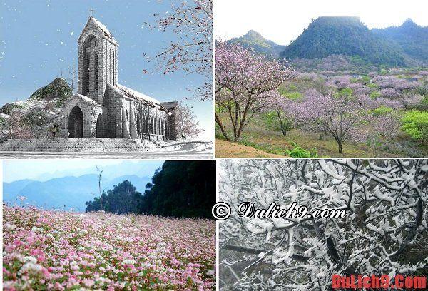 Du lịch mùa đông gần Hà Nội