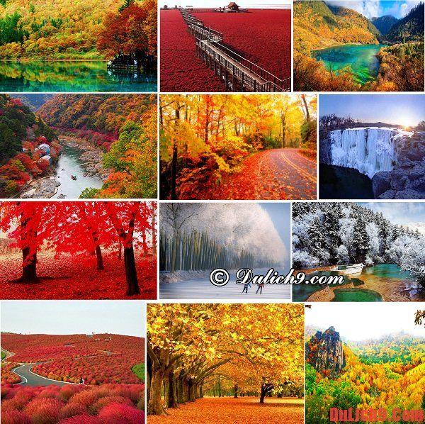 Nên du lịch ngắm cảnh mùa thu - đông ở đâu đẹp và tuyệt vời nhất?