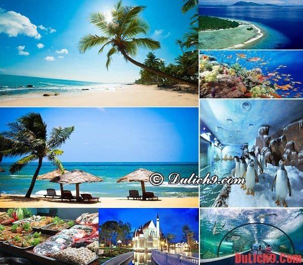 Biển Vũng Tàu - Điểm du lịch biển mùa đông cho những ai yêu thích những bãi biển hoang sơ