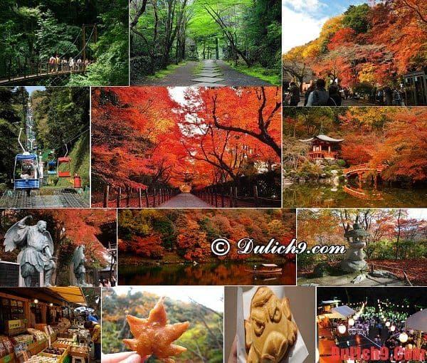 Núi Takao - Điểm tham quan nên đến khi du lịch Nhật Bản tự túc
