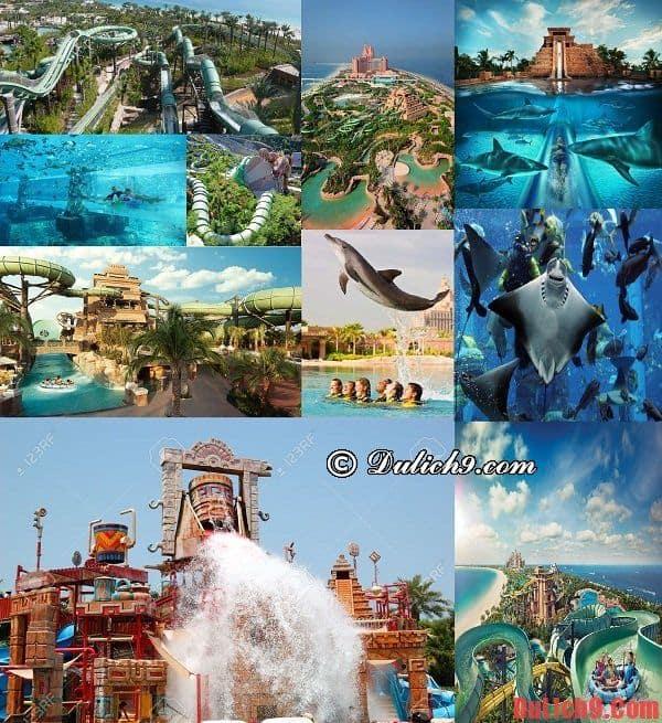 Công viên nước Aquaventure Park - Địa điểm vui chơi, giải trí không thể không ghé qua khi du lịch Dubai