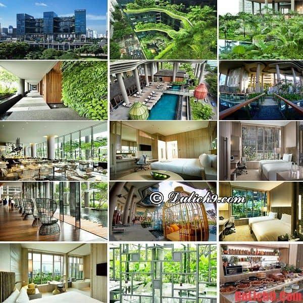 Khách sạn đẹp, tốt và tuyệt vời nhất Singapore