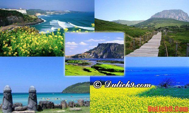 Resort, khách sạn cao cấp ở đảo Jeju