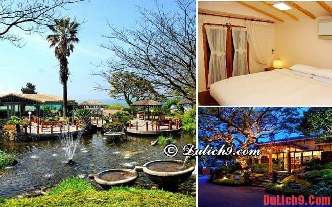 5 resort, khách sạn cao cấp ở đảo Jeju có tầm nhìn đẹp