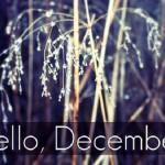 Tháng 12 nên đi du lịch ở đâu?