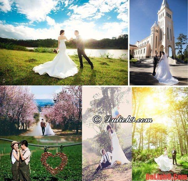 Những địa điểm chụp ảnh cưới đẹp, lãng mạn ở miền Bắc. Nên đi đâu chụp ảnh cưới ở miền Bắc
