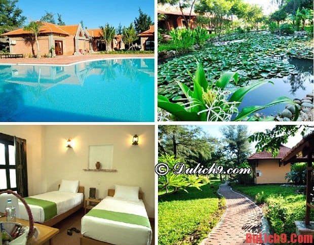 Resort ở Phan Rang - Tháp Chàm có giá tốt