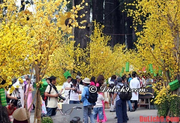 Chợ hoa ngày Tết nổi tiếng ở Sài Gòn