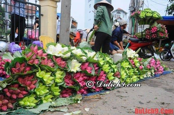 Chợ hoa Đầm Sen đẹp và giá rẻ