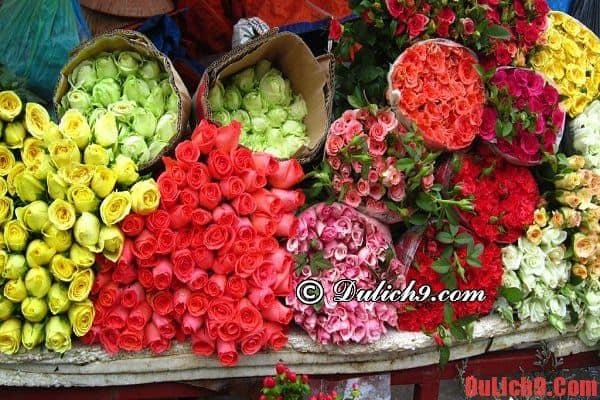 Du lịch Hà Nội ghé thăm chợ hoa Tết đẹp họp ban đêm
